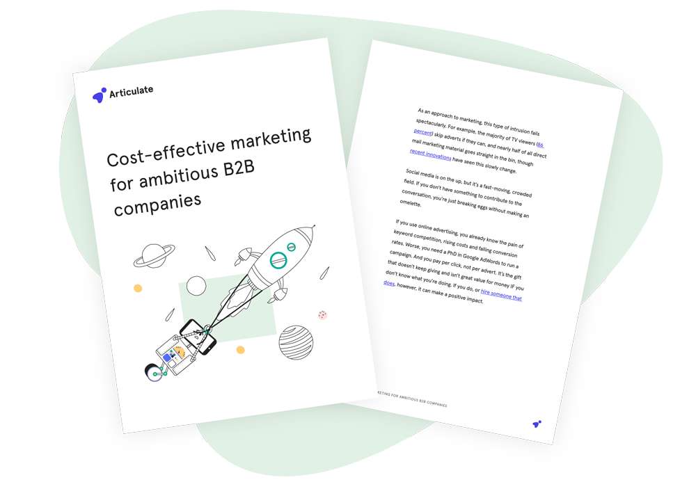 Articulate---Cost-effective-marketing-for-ambitious-B2B-companies-MOCKUP-small-01
