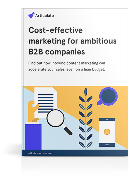 Cost-effective marketing for ambitious B2B companies cover mockup