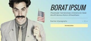 lorem ipsum generators: screen shot of borat ipsum
