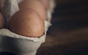 Working remote as an Articulate intern: free range eggs