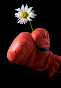 boxing glove with daisy