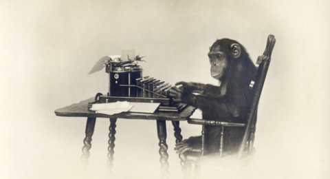 Professional writers: monkey at a typewriter