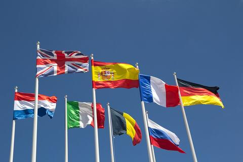 Learning another language - flags